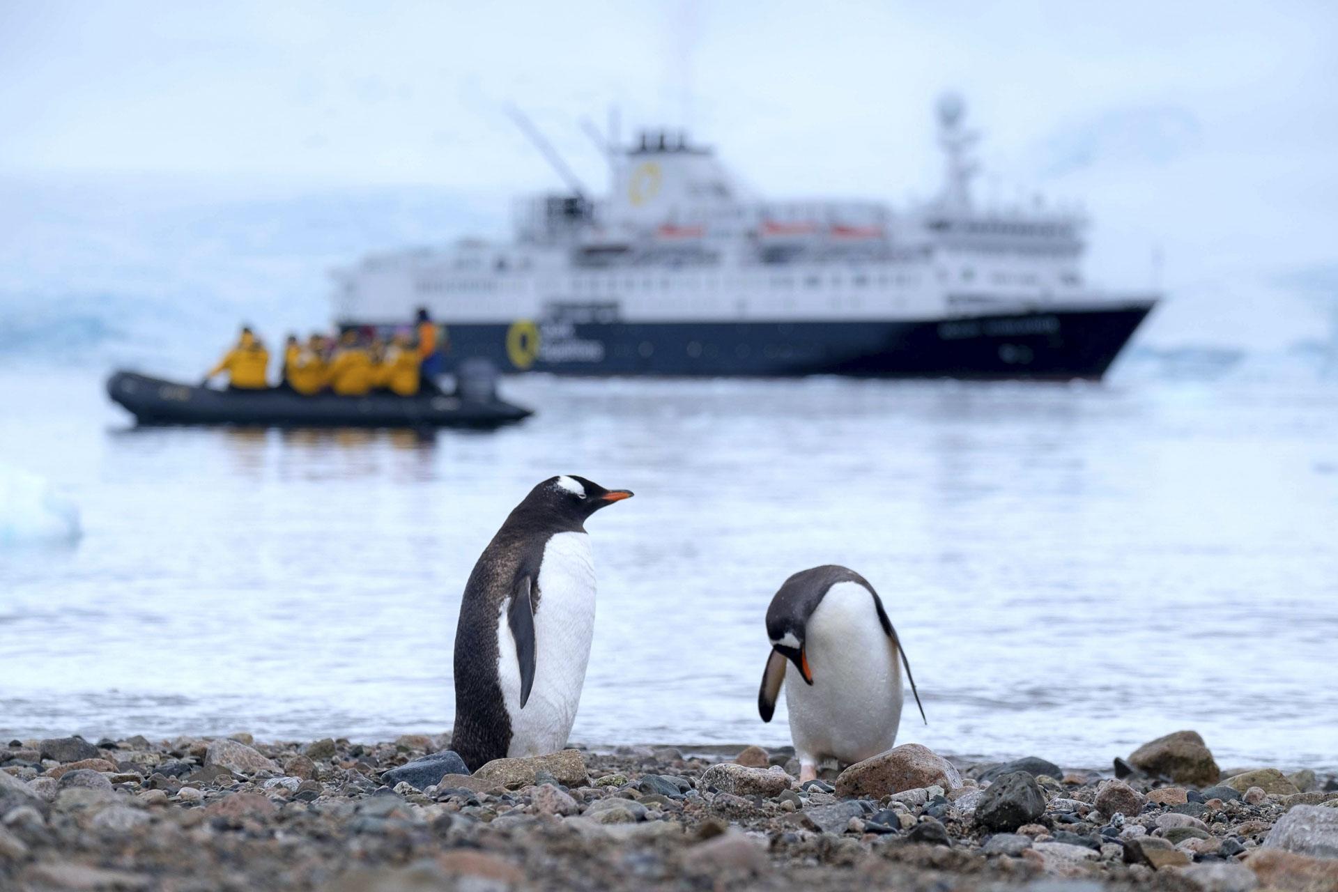 Expeditiecruise Antarctica | Mira Tours – Reisbureau Haacht