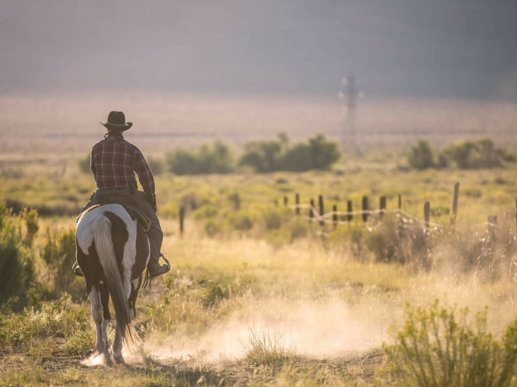 Rondreis USA Texas - Rondreizen USA | Mira Tours – Reisbureau Haacht