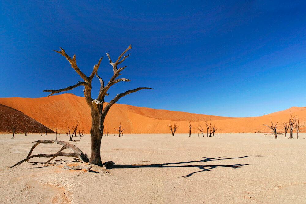 Namibie, Rondreis in Afrika | Mira Tours – Reisbureau Haacht