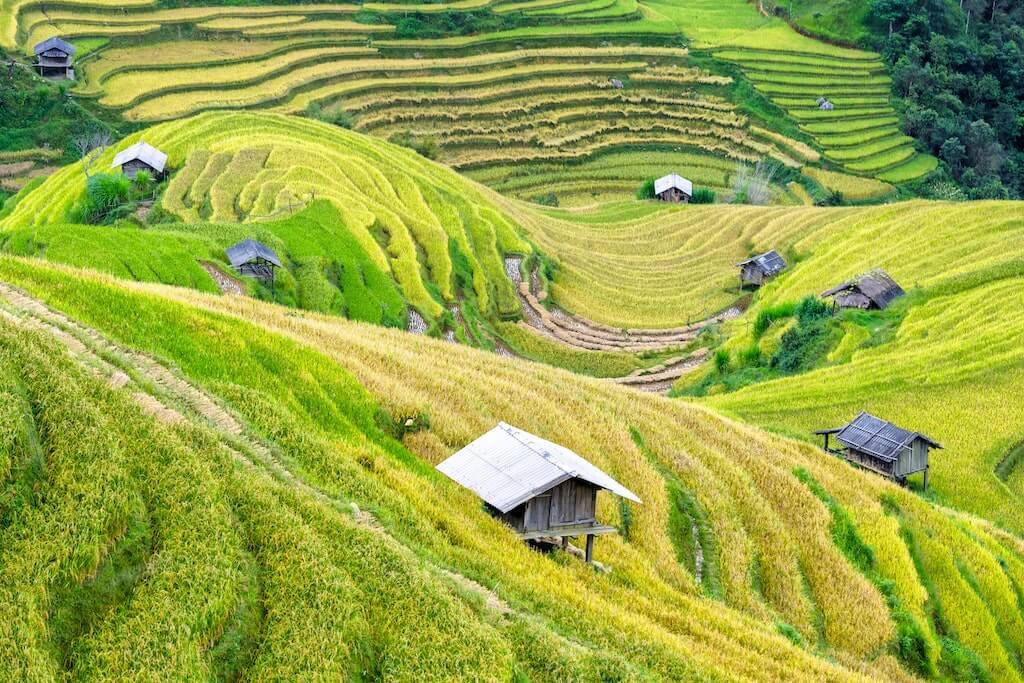 Rondreis Vietnam - Rondreizen Azie | Mira Tours – Reisbureau Haacht